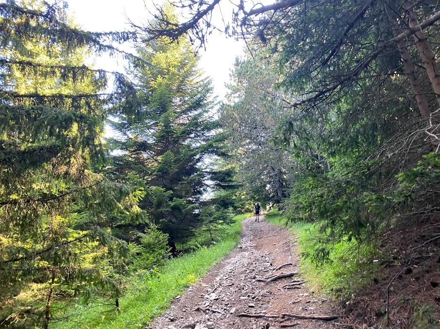 Elevate your mood naturally while hiking Oshlak